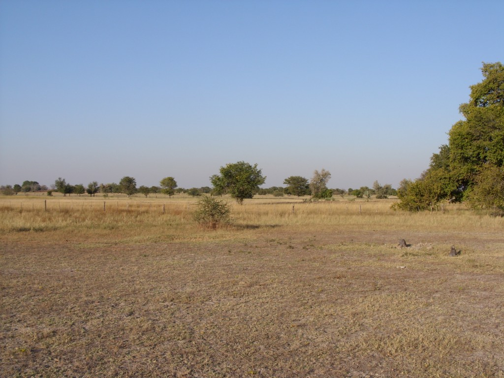Landscape in Oshana Region