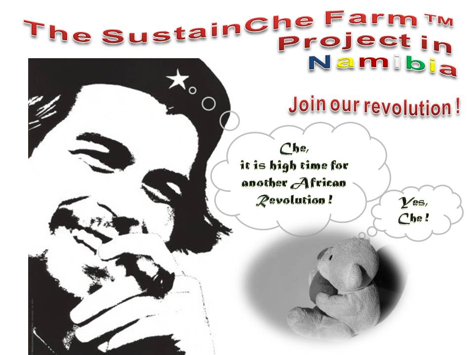 Sustainche's Farm Project Poster Che and Che