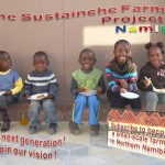 Sustainche's Farm Project Poster The Next Generation